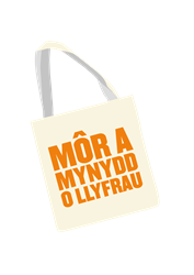 Welsh bag